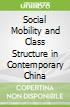 Social Mobility and Class Structure in Contemporary China