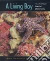 A Living Bay