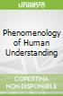 Phenomenology of Human Understanding
