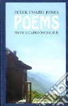 Poems from a Cabin on Big Sur