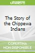 The Story of the Chippewa Indians