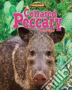 Collared Peccary libro in lingua di Person Stephen