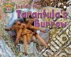 Inside the Tarantula�s Hole