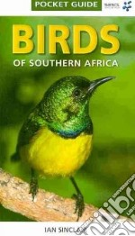 Birds of Southern Africa libro in lingua di Sinclair Ian