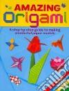 Amazing Origami libro str