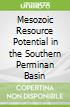 Mesozoic Resource Potential in the Southern Perminan Basin