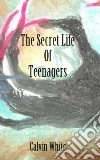 The Secret Life of Teenagers