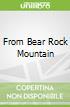 From Bear Rock Mountain