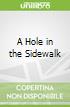 A Hole in the Sidewalk