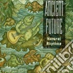 Natural rhythms - cd musicale di Future Ancient