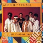 Feel something drawing me - sweet honey the rock gospel cd musicale di Sweet honey in the rock
