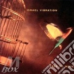 FREE TO MOVE                              cd musicale di Vibration Israel