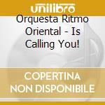 Orquesta Ritmo Oriental - Is Calling You! cd musicale di Orquesta ritmo orien