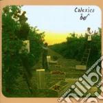 SPOKE cd musicale di CALEXICO