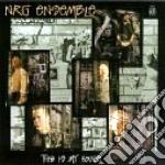 This is my house - cd musicale di Ensemble Nrg