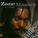 Safe to imagine - cd musicale di Massey Zane
