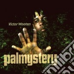 Palmystery cd musicale di Victor Wooten