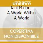 A WORLD WITHIN A WORLD cd musicale di Raul Midon