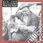 Shake your boogie cd musicale di Williams big joe