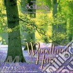 WOODLAND HARP                             cd musicale di Howard Baer