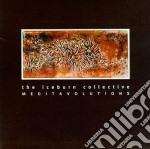 Meditavolutions cd musicale di Collective Iceburn