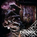 MIRROR OF RETRIBUTION                     cd musicale di CHTHONIC
