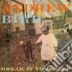 Break it yourself cd musicale di Bird Andrew