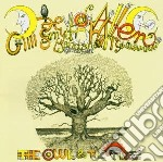 Owl in the tree cd musicale di Gong Mother
