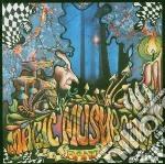 Re-hash cd musicale di Magic mushroom band