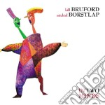 IN TWO MINDS cd musicale di Bill/borstl Bruford