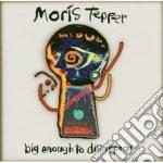 Big enough to disappear cd musicale di Tepper Moris