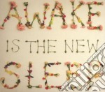 Awake is the new sleep cd musicale di Ben Lee