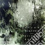 BUSHES & BRIARS cd musicale di MCKEOWN SUSAN