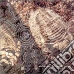 Early man cd musicale di Steve Roach
