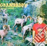 BELOW THE RADIO cd musicale di GRANDADDY