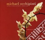 Chasing after light cd musicale di Michael occhipinti &