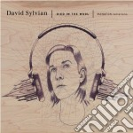 Died in the wool cd musicale di David Sylvian