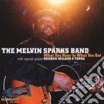 What you hear is what you cd musicale di The melvin sparks ba
