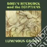 (LP VINILE) LUMINOUS GROOVE                           lp vinile di Robyn & t Hitchcock