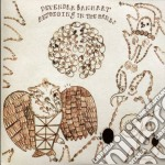 Devendra Banhart - Rejoiceng In The Hands cd musicale di DEVENDRA BANHART