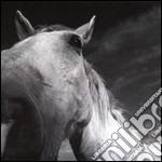 LP3 cd musicale di RATATAT