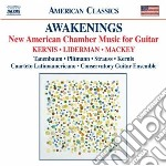 2 AWAKENINGS AND A DOUBLE LULLABY         cd musicale di KERNIS AARON JAY