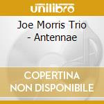 Joe Morris Trio - Antennae cd musicale di Joe trio Morris