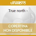 True north - cd musicale di Last train home