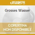 GROSSES WASSER                            cd musicale di CLUSTER