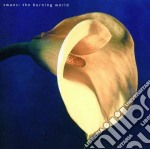 The burning world cd musicale di Swans