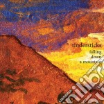FALLING DOWN A MOUNTAIN                   cd musicale di TINDERSTICKS