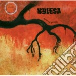 TIME WILL FUSE ITS WORTH cd musicale di KYLESA