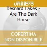 CD - BESNARD LAKES - BESNARD LAKES ARE THE DARK HORSE cd musicale di Lakes Besnard