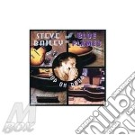 Hop on board - cd musicale di Steve bailey & the blues flame